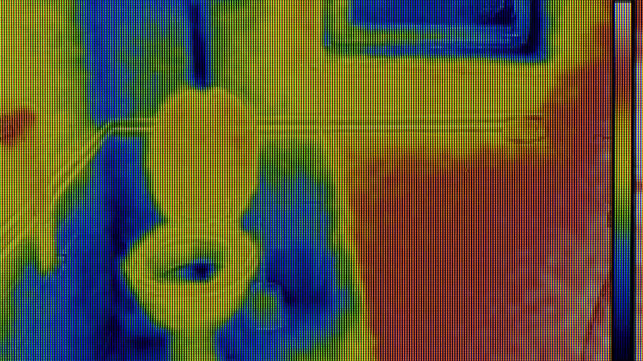 Water Damage Thermal Imaging
