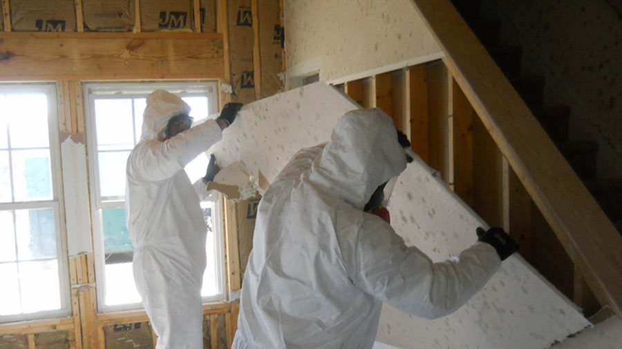 Professional Mold Remediation. Mold Removal Remediation   Armstrong Water Mold Cleanup   Restorations