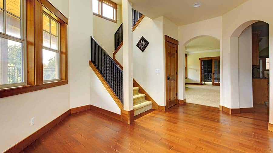 Water Damage Mold Restoration Services In Port